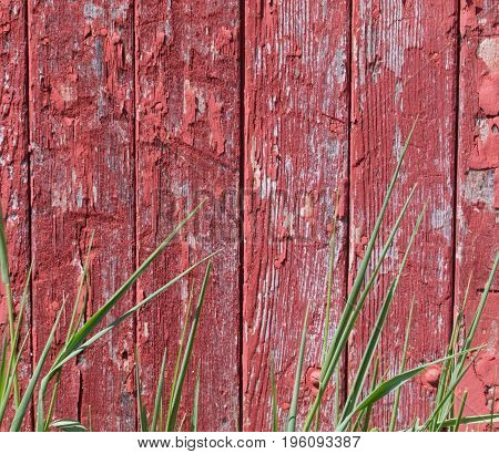 Old barn vertical siding appears with grass in the sun.