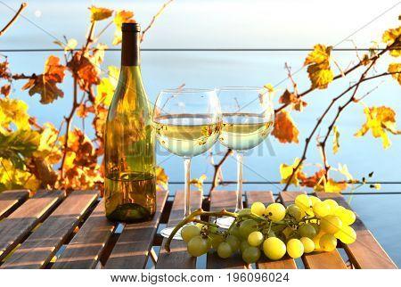 Wine and grapes. Lavaux, Geneva lake, Switzerland