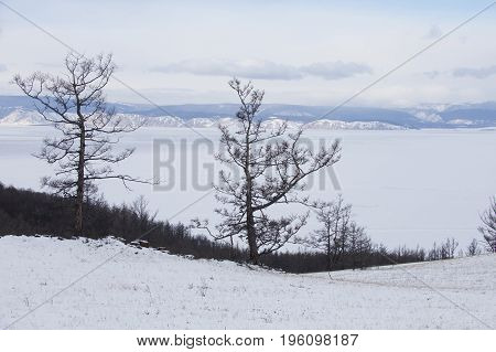 View Of Lake Baikal. Olkhon Island Winter Landscape