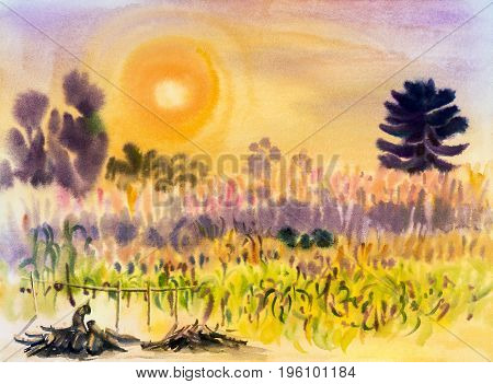 Watercolor landscape original painting on paper colorful of converting corn flowers and emotion in sun evening sky background