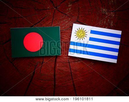 Bangladesh Flag With Uruguaian Flag On A Tree Stump Isolated