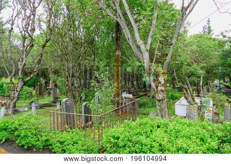 Old Forrested Cemetery In Reykjavik