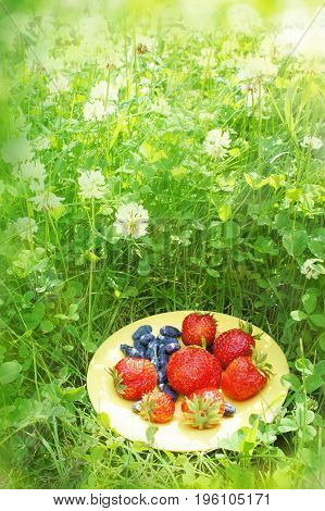 Strawberry and honeysuckle on a saucer on a green background in the sun. A bright summer composition among the wildflowers. Healthy fresh Breakfast in nature.