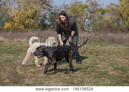 Girl and her dogs during a walk