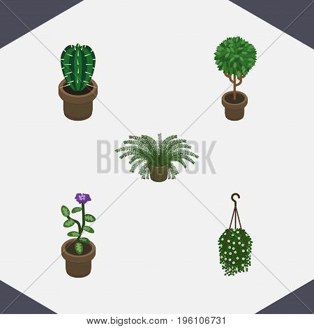Isometric Plant Set Of Flower, Blossom, Tree And Other Vector Objects
