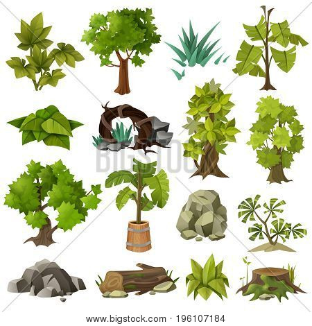 Green tropical exotic plants forest trees and modern landscape gardening design elements icons collection  isolated vector illustration