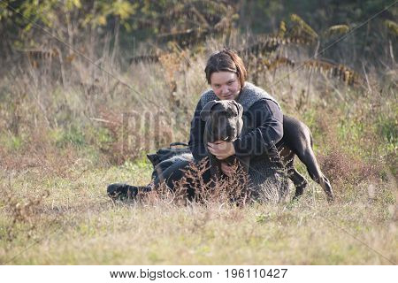 Girl and her gray cane corso puppy