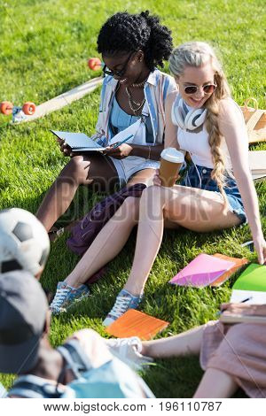 happy young multiethnic women studying while sitting on grass in park