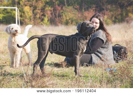 Girl with her laggoto romagnolo and cane corso puppy