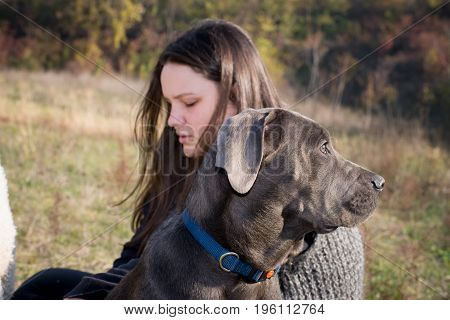 Girl is resting with her cane corso puppy
