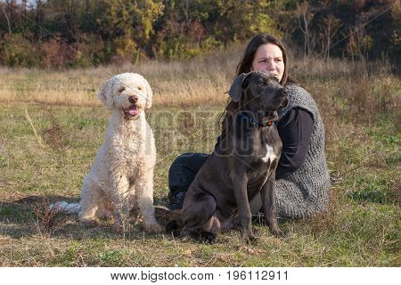Girl and her dogs in the field