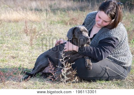 Girl talks with his cane corso puppy