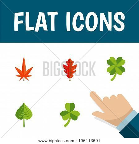 Flat Icon Leaves Set Of Aspen, Leaf, Leafage And Other Vector Objects