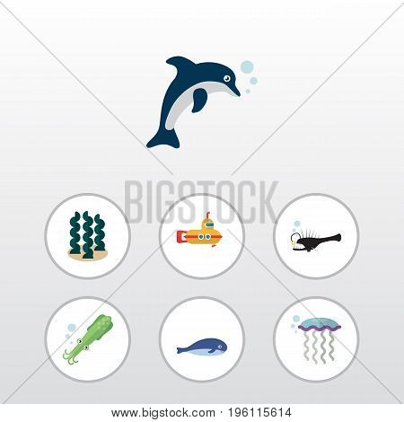 Flat Icon Sea Set Of Alga, Fish, Playful Fish And Other Vector Objects