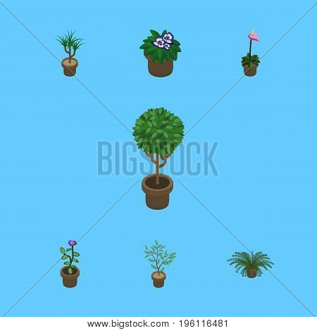 Isometric Plant Set Of Flower, Tree, Grower And Other Vector Objects