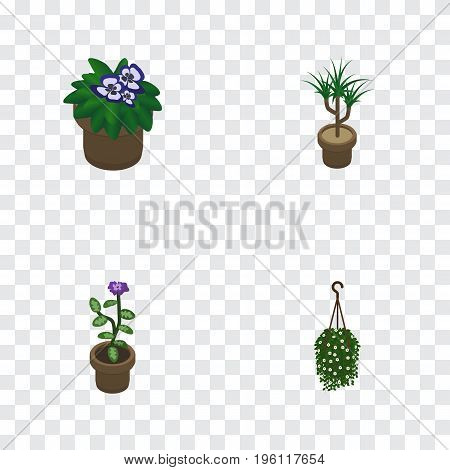 Isometric Plant Set Of Flower, Houseplant, Flowerpot And Other Vector Objects