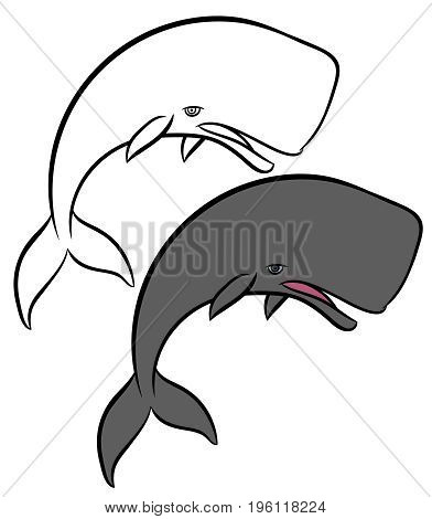 sperm whale - cartoon hand drawn vector illustration of whale