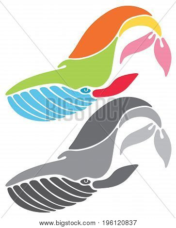 stylized colorful and grayscale vector illustration of whale