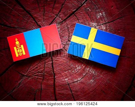 Mongolian Flag With Swedish Flag On A Tree Stump Isolated