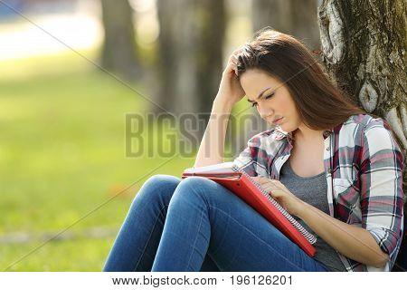 Attentive single student memorizing notes outdoors sitting on the grass in a park