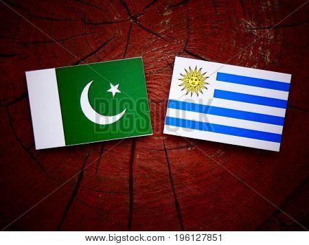 Pakistani Flag With Uruguaian Flag On A Tree Stump Isolated