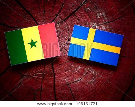 Senegal Flag With Swedish Flag On A Tree Stump Isolated