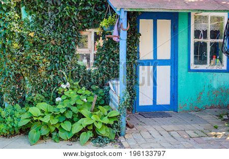 The front door window and Ivy wall of a traditional village house Russia