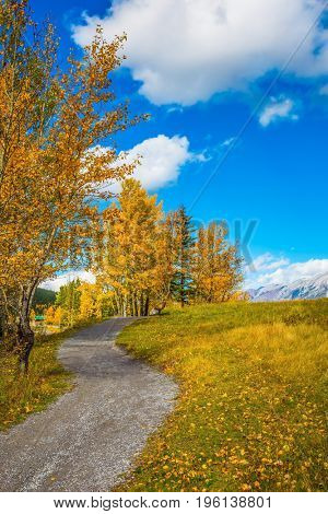 The concept of hiking. Path around the lake. Autumn in Canmore, near Banffl Park