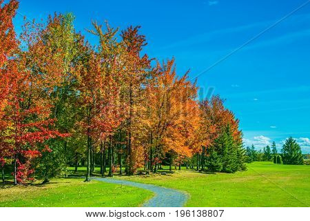 Golden autumn in French Canada. Multi-colored trees, green lawn grass and blue sky. Warm sunny day on the outskirts of Montreal. The concept of eco-tourism