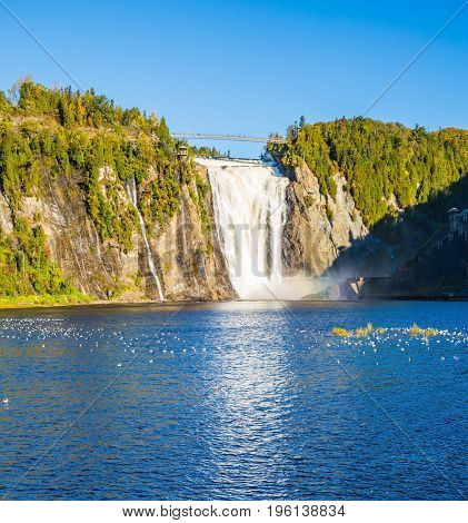 Flock of water birds resting in water. The vast blue lake and powerful waterfall Montmorency in Montmorency Falls Park, in vicinities Quebec.
