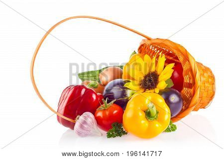 Still life of organic fresh vegetables and herb, isolated on white background.