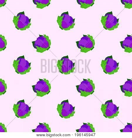 Seamless Background Image Colorful Vegetable Food Ingredient White Cauliflower Purple Cauliflower