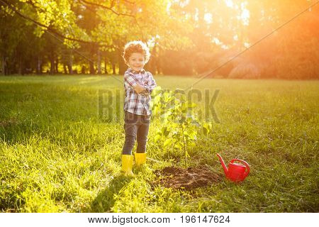 Little boy posing near planted tree and looking proudly at camera.