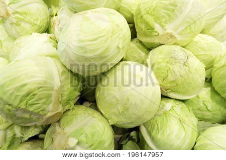 Fresh cabbage in the market close up