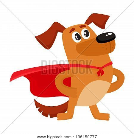 Cute brown funny dog, puppy character in red cape standing as hero, superhero, cartoon vector illustration isolated on white background. Funny dog, puppy character in hero, superhero red cape