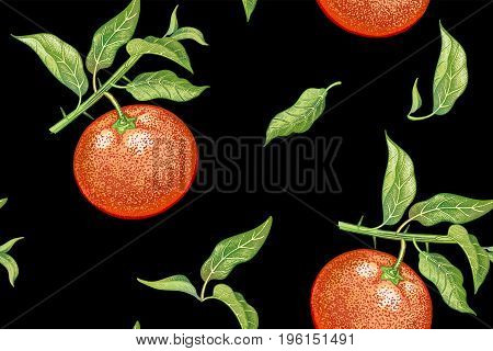 Seamless pattern with tangerines. Realistic vector illustration plant. Hand drawing with colored pencils. Mandarin fruit leaf branch on black background. For kitchen design food packaging. Vintage.