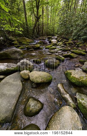 Rocky Stream in Early Summer in Mountains