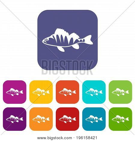 European perch, Perca fluviatilis icons set vector illustration in flat style in colors red, blue, green, and other