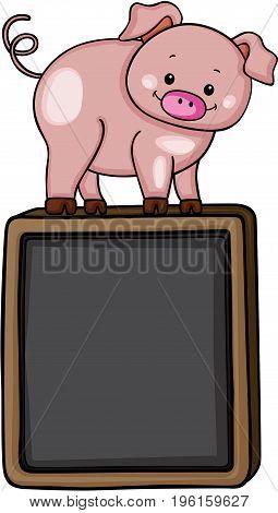 Cute pig on top of on black chalkboard