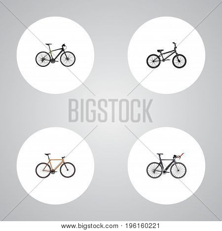 Realistic Timbered, Hybrid Velocipede, Extreme Biking And Other Vector Elements