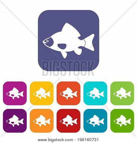 Fish icons set vector illustration in flat style in colors red, blue, green, and other
