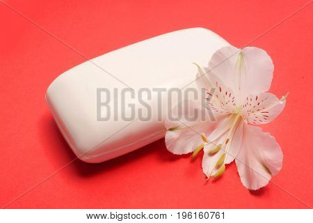 Soap and flower Alstromeria on a red background. Spa