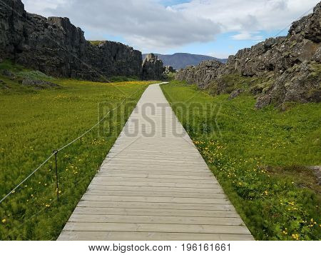 Mountains surround a wooden plank walkway with flowers