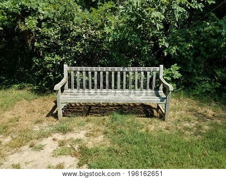 wood bench covered in lichen in green grass