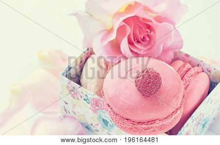 Macarons with raspberries marshmallows on the background of beautiful flowers roses. Dessert close-up. A horizontal frame.