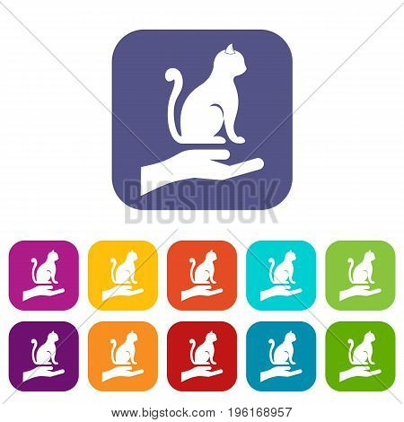 Hand holding a cat icons set vector illustration in flat style in colors red, blue, green, and other
