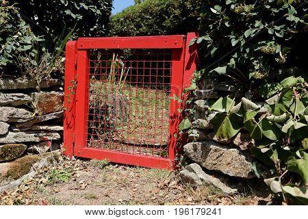 Red garden gate to enter a garden in rural france