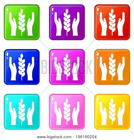 Hands and ear of wheat icons of 9 color set isolated vector illustration