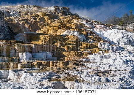 Mammoth Hot Springs in Yellowstone National Park Wyoming