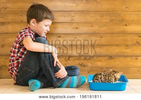 The boy accustoms the kitten to the toilet and observes